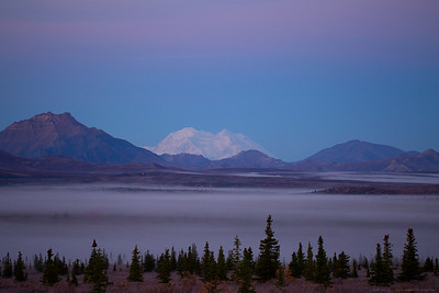 The Great One - Denali - the highest mountain in North America.  The park in front is an 8,000,000 acre wildlife haven - North America's Serengeti - Denali National Park cannot help but put our stature in our environment into a more humble perspective.