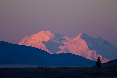 The Great One - Denali - the highest mountain in North America. Taken at the precise moment where the colors of the rising sun were casting alpenglow on Denali on a clear day.