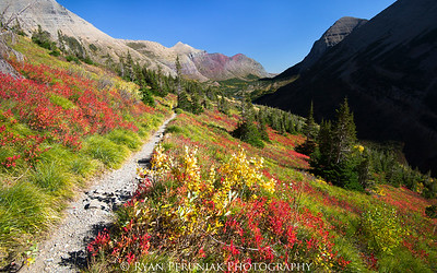 """""""Of all the paths you take in life, make sure a few of them are dirt."""" – John Muir"""