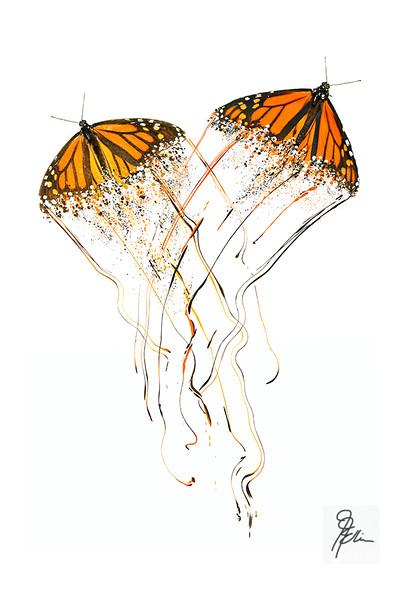 Monarchs Dance