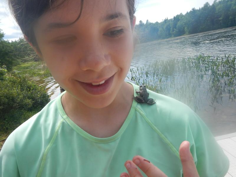 Wildlife Encounters at Wildwood: Now