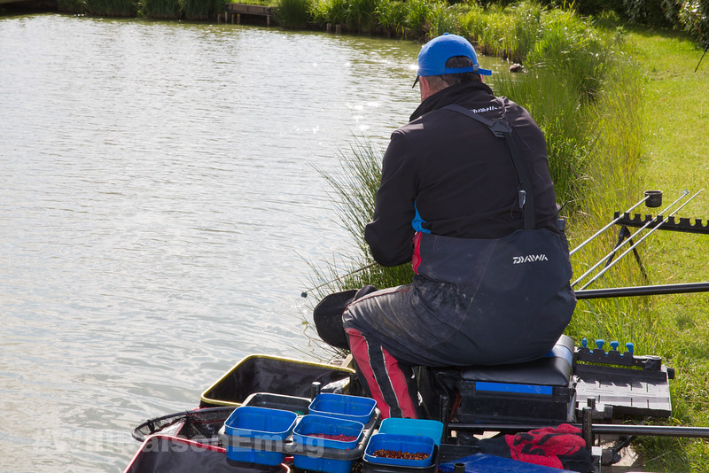 Will Raison tips the casters and dead maggot from the pole cad over the baited rig into the near side margin beside the pond grass.