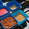 Bait tray shot - dead red maggots in water casters, expander pellets, micro pellets.