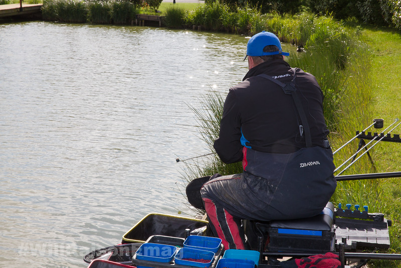 Will Raison lowers the baited rig into the near side margin beside the pond grass.