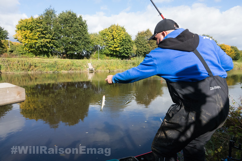 Swinging a dace to hand on the Bolo rod.