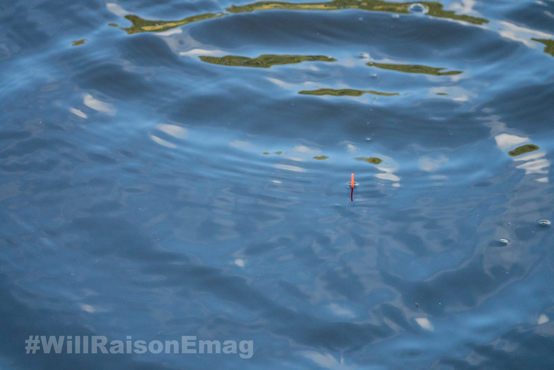 Short rig float on the surface.