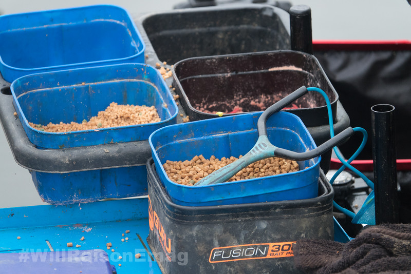 Bait tray shot, with pellets and red maggots on view.