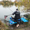 Will Raison nets a typical Middle Lake F1 carp at Gold Valley Lakes.