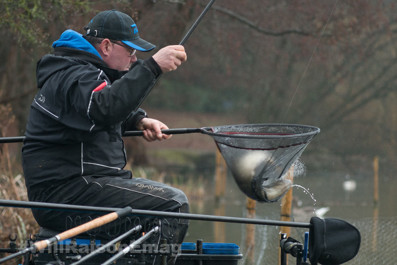 Netting a pole caught bream.