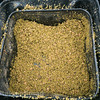 Fishmeal crumb with dampened micro pellets for groundbait.