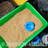 Shallow bait tray containing soaked micro pellets and a large Garbolino Speed Mould. © 2009 Brian Gay