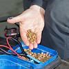 A handful of 8 mm hard pellets.