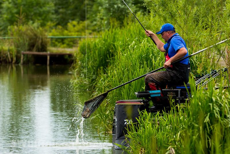 Netting an F1 carp.