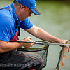 Placing a barbel in the net.