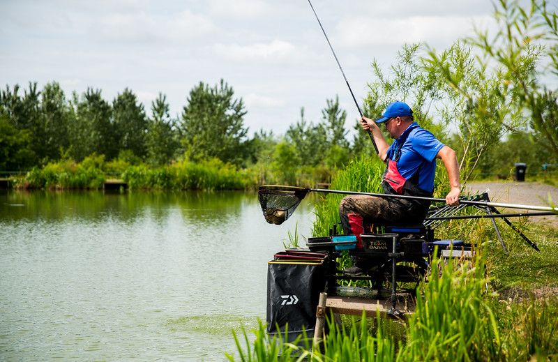 Lifting an F1 carp in the net.