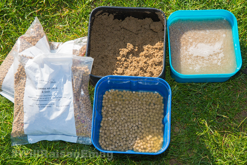 bit selection, two bags of dry Westwood Lakes Coarse Pellets 2.3 mm and 4.5 mm . 1 pint  bait box of damp crushed pellet dust, 1 pt bait box with 3.5 mm pellets soaking in water, 1 pt bait box with pumped expanders in water.