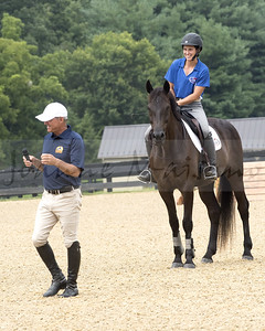 Melanie Ferrio-Wise on Wings the bridleless horse