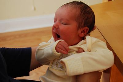 Will - 1st six months
