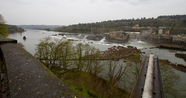 Willamette Falls as seen from observation point