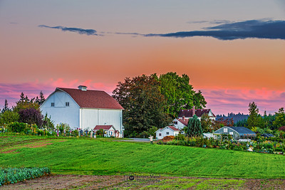 """Rural Escape,"" Luscher Farm Sunset, Lake Oswego, Oregon"
