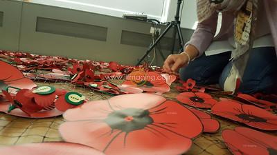 18 ILF Oct Cascading Poppy Construction 0020