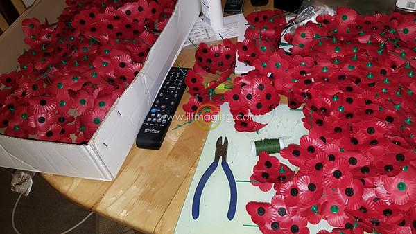 18 ILF Oct Cascading Poppy Construction 0010