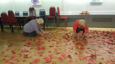18 ILF Oct Cascading Poppy Construction 0021
