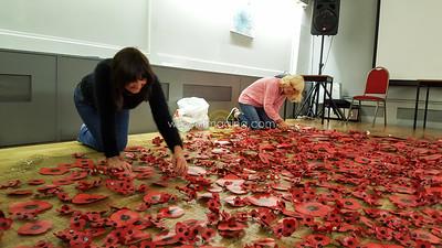 18 ILF Oct Cascading Poppy Construction 0029