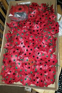 18 ILF Oct Cascading Poppy Construction 0011