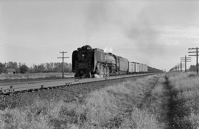 2013.010.UP.AS.0833A--bill kuba 6x9 neg--UP--steam locomotive 4-8-4 833 on freight train--Central City NE--1958 1011