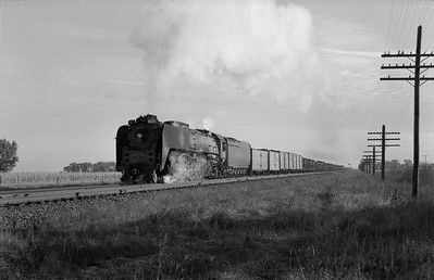 2013.010.UP.AS.0833B--bill kuba 6x9 neg--UP--steam locomotive 4-8-4 833 on freight train--east of Grand Island NE--1958 1011