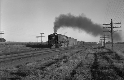 2013.010.UP.AS.0836A--bill kuba 6x9 neg--UP--steam locomotive 4-8-4 836 on freight train action--west of Valley NE--1958 0927