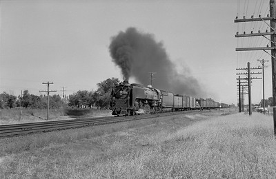 2013.010.UP.AS.0830B--bill kuba 6x9 neg--UP--steam locomotive 4-8-4 830 on freight train action--west of Central City NE--1958 1011