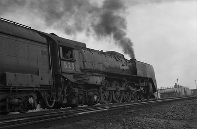 2013.010.UP.AS.0825A--bill kuba 6x9 neg--UP--steam locomotive 4-8-4 825 low angle scene in yard--Cheyenne WY--1955 0615