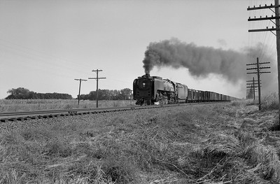 2013.010.UP.AS.0829A--bill kuba 6x9 neg--UP--steam locomotive 4-8-4 829 on freight train action--North Valley NE--1958 0929