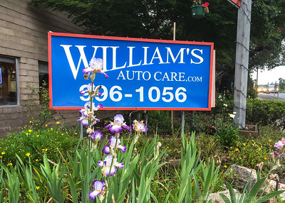 William's Automotive Care Sonoma