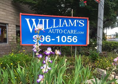 William's Automotive Care Sonoma