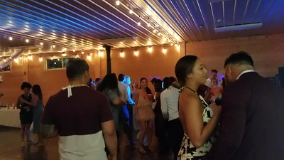 Williams wedding videos