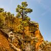 Willis Creek Canyon<br /> Grand Staircase Escalante National Monument, Utah