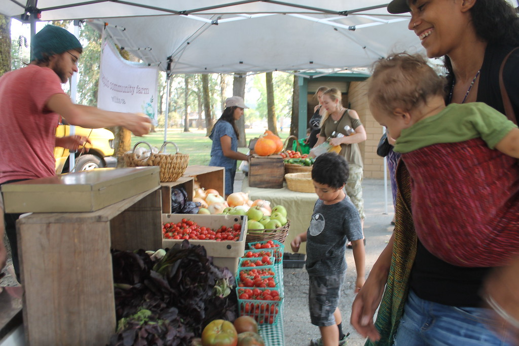 . HILLARY OJEDA/THE WILLITS NEWS A customer exploring her options at the vegetable stand of the School of Adaptive Agriculture on Thursday at the Willits Farmers Market.