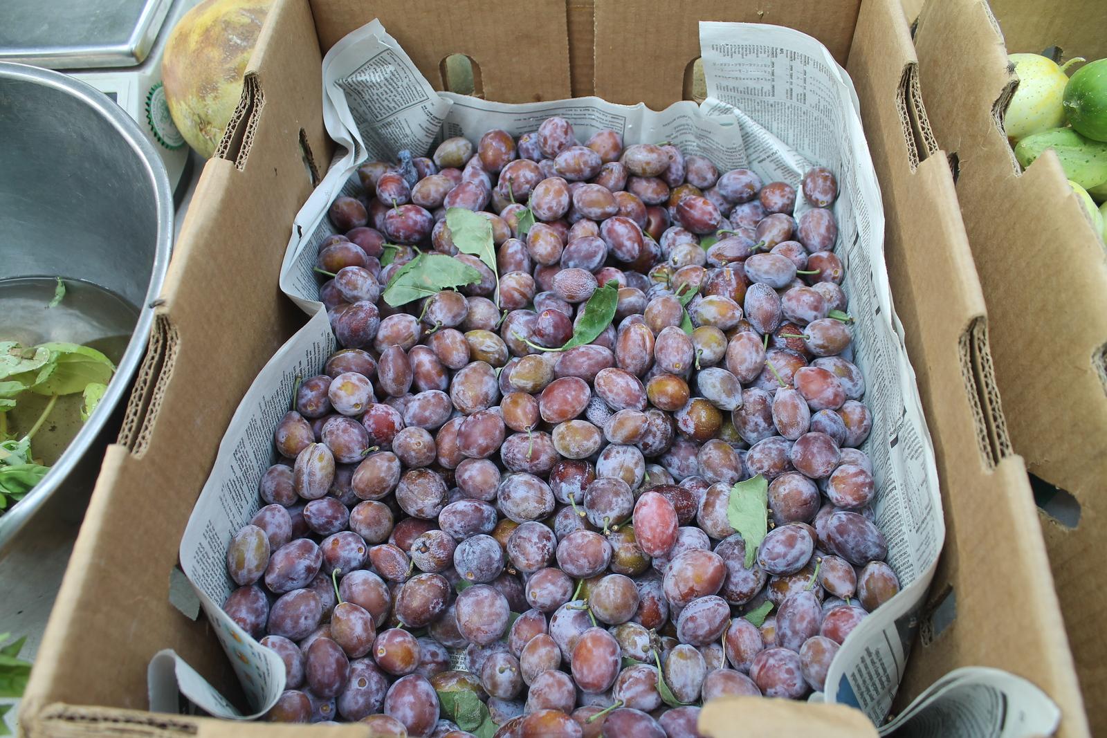 Willits Farmers' Market