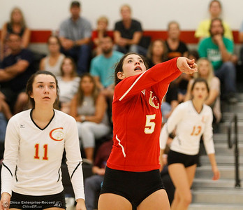 With a calm precision Chico High's Mikayla Nichols (5) bumps the ball as teammate Jacey Cornell watches during a volleyball game against Willow High September 20, 2016 Chico, Calif. (Emily Bertolino -- Enterprise-Record)