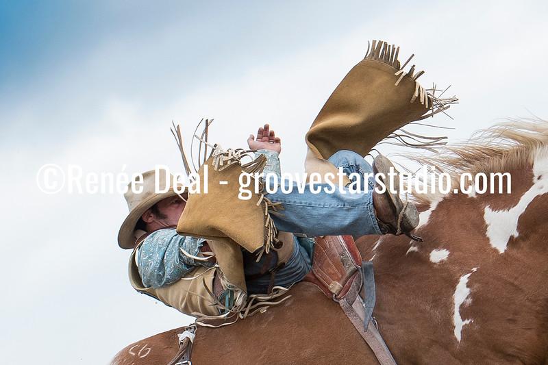 DSC_4761- Willowdale Pro Rodeo 10 14 17- Bareback Riding- Tim Kent- 1st pl 73pts