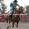 DSC_4556- Willowdale Pro Rodeo 10 14 17- Wendy Chesnut- 1st- 13 45 sec
