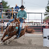 DSC_4554- Willowdale Pro Rodeo 10 14 17- Wendy Chesnut- 1st- 13 45 sec