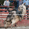 DSC_5561- Willowdale Pro Rodeo 10 14 17- Bull Riding- Mike Adams- 1st pl 88pts