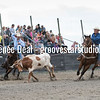 DSC_5196- Willowdale Pro Rodeo 10 14 17- Team Roping- Gary Dubois and Mike Charles- 2nd pl 7 3 sec