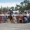 DSC_4847- Willowdale Pro Rodeo 10 14 17- Tie Down Roping- Ty Rumford- 2nd pl 14 0 sec and All Around Cowboy