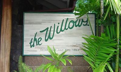 Willows -Kawashima