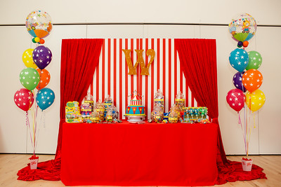 Willow's Party